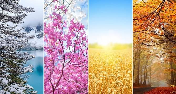 Сезоны года