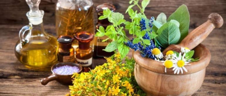 Травы и чаи от псориаза: что пить для лечения
