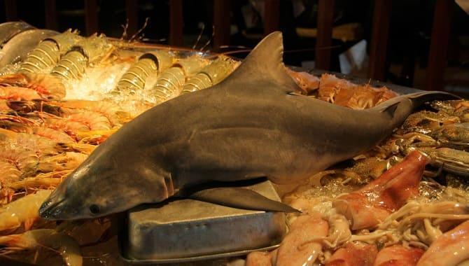 Мясо акулы