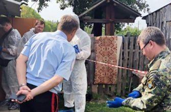 убийство в Ульяновской области