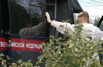 массовое убийство в Ульяновске