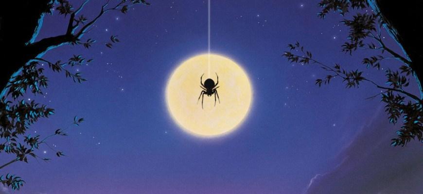 Паук на фоне луны