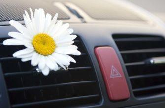 Цветок в машине