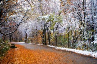 приметы ноября о погоде