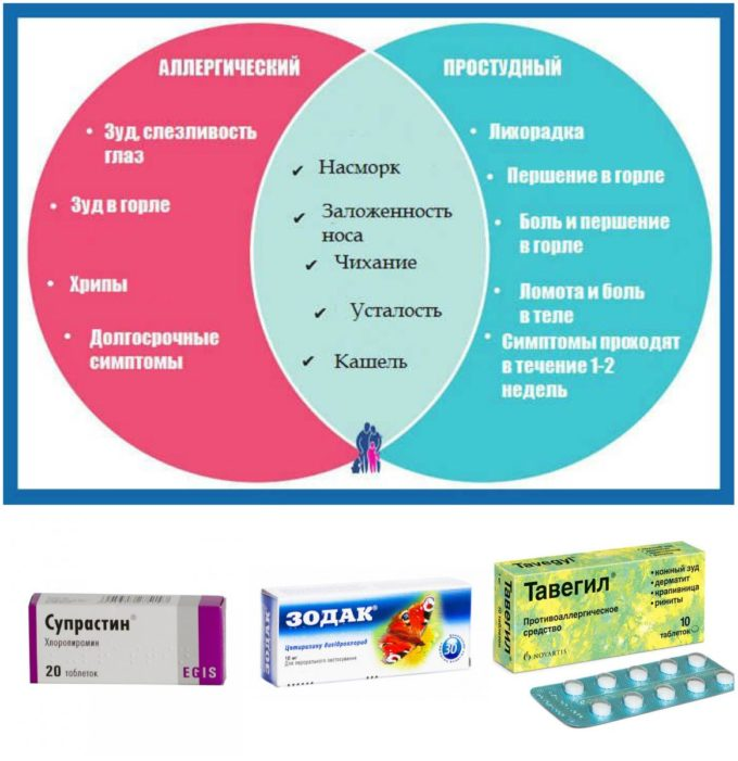 Отличия аллергии от простуды