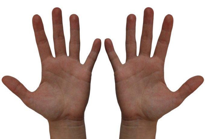 Пальцы человека