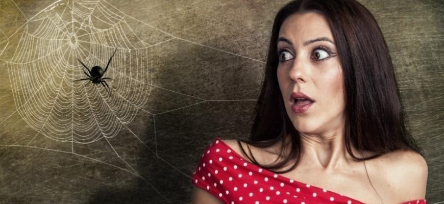Девушка испугалась паука