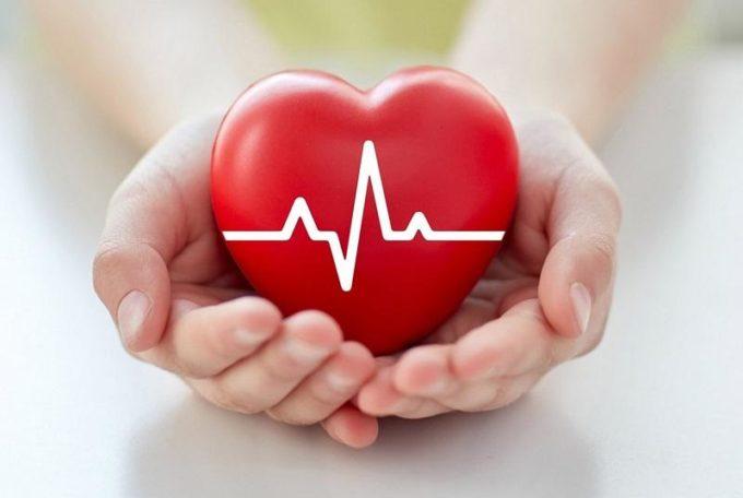 Сердце в ладонях