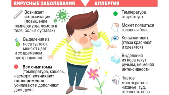 Отличия аллергии и простуды